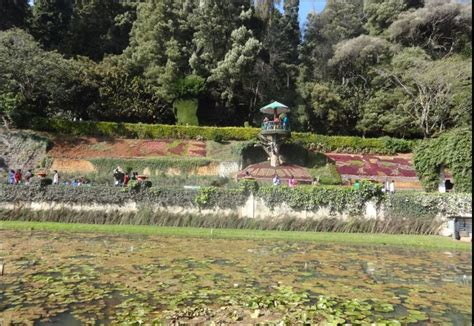 Botanical Garden Entrance Fee Ooty Botanical Garden Entry Time Entrance Fees Attractions Images