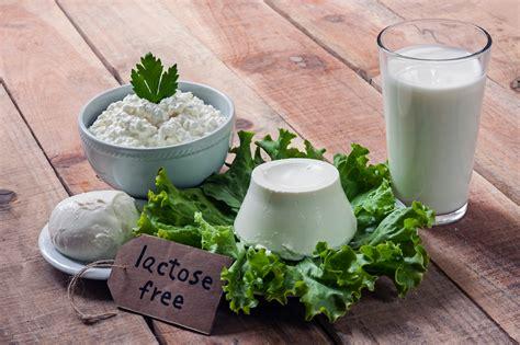 alimenti senza lattosio e glutine senza glutine e senza lattosio oltre 4500 prodotti per
