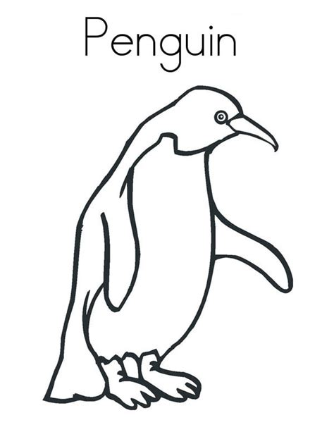 realistic penguin coloring page a realistic drawing of humboldt penguin coloring page
