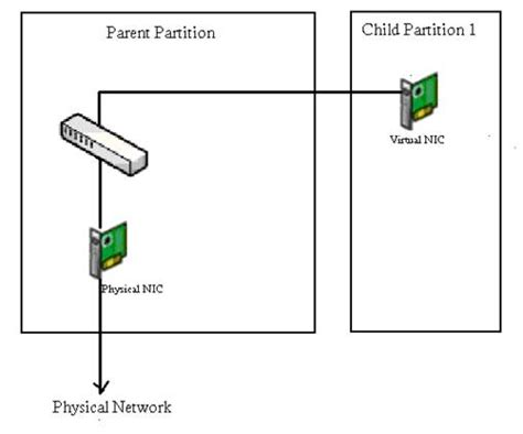 the diagram illustrates a small portion of several myofibrils networking for hyper v part 2