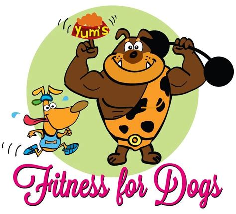 puppies and fitness fitness for dogs leamington spa