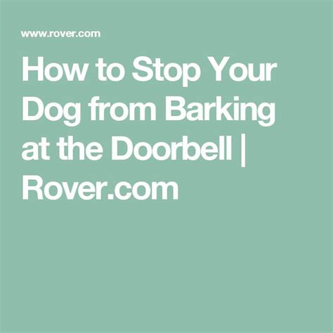 how to stop your puppy from barking best 25 stop dog barking ideas on pinterest dog barking