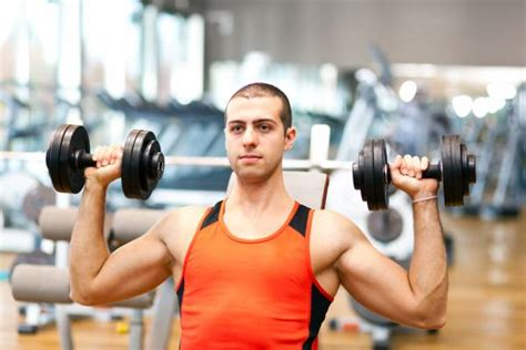 difference between dumbbell and barbell bench press the overhead press the difference between seated