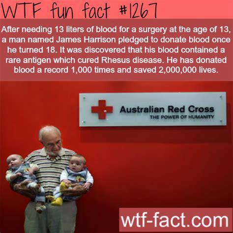 wtf facts babygaga