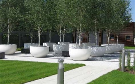 Large Planter Pots For Trees by White Planter Pots And Trees Wilson Mcwilliam Hyde