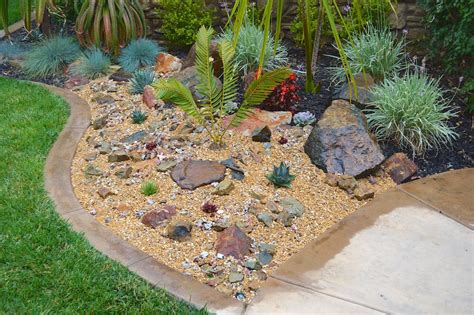plants for rock garden what are plants for rock gardens