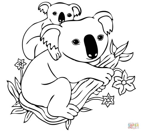 koala ballet coloring pages coloring pages of a koala free draw to color