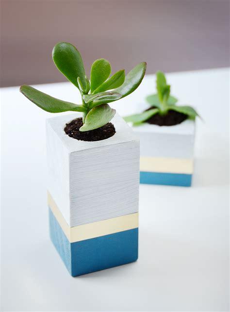 succulent planter diy easy diy succulent planter