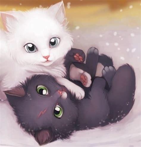 google imagenes de gatos imagenes de gatos tiernos animados
