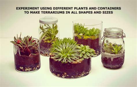 make your own terrarium ikea need sheet sphagnum peat