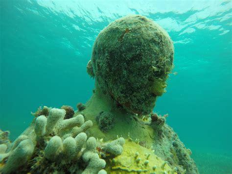 imagenes del señor otoño curiosidades del mar caribe