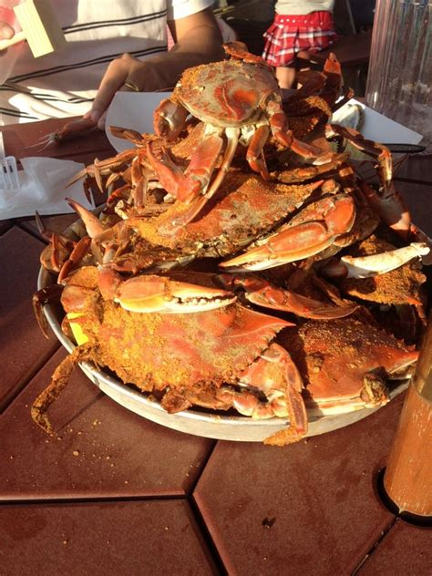 mud city crab house mud city crab house seafood markets manahawkin nj yelp