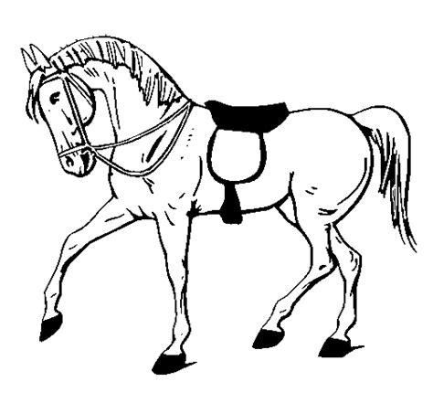 blanco y negro pintura lineal dibujar caballo ilustraci 243 n dibujo de caballo de competici 243 n para colorear dibujos net
