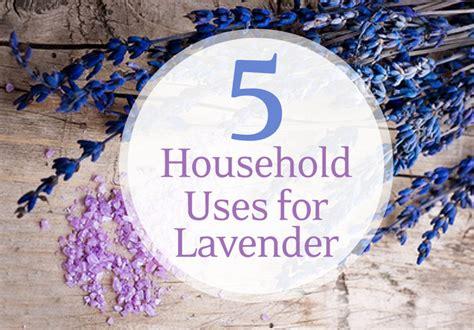 5 household uses for lavender