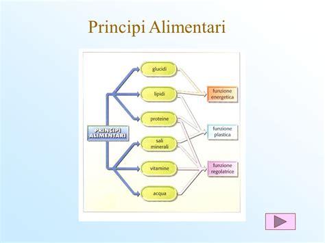 principi nutritivi degli alimenti i principi nutritivi ppt scaricare