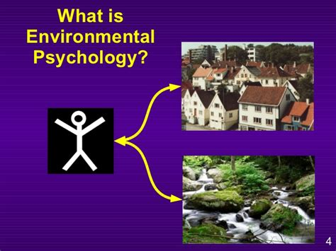 environmental psychology paul bell