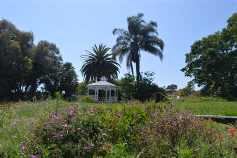 Orange County Botanical Gardens Everything S Coming Up Wildflowers Your Complete Guide To Orange County S Blooms Oc