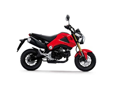 Small Honda Motorcycles 2014 Honda Grom Small City Motorcycle Welcome