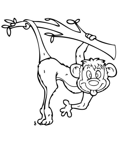 silly monkey coloring pages cute cartoon monkey coloring page coloring page of a