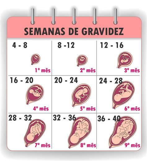 Calendario Gravidez Quantas Semanas S 227 O Quantos Meses Dra Patr 237 Cia Peres