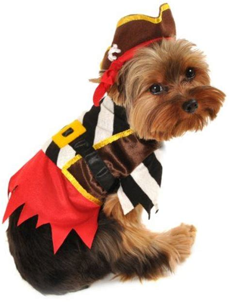 costumes for yorkies 17 best images about yorkie and puppy on costumes for dogs
