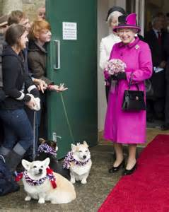 queen elizabeth s dog queen elizabeth dogs corgi