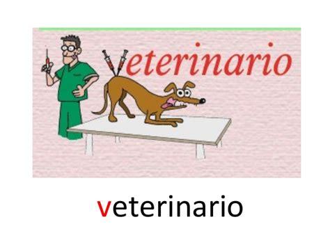 imagenes y palabras con v palabras con v parte 2