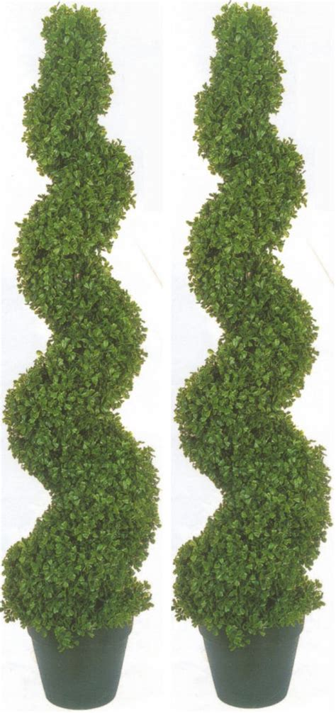real topiary trees for sale 2 boxwood spiral topiary artificial outdoor uv tree 4 2