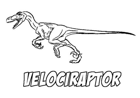 coloring page velociraptor velociraptor coloring pages best coloring pages for kids
