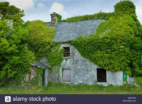Cottages For Sale In Ireland By The Sea by Derelict Cottage For Sale In Need Of Renovation Covered
