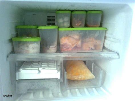 Kulkas Keluarga Kecil cara menyimpan makanan didalam kulkas