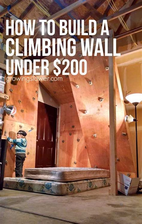 best 25 climbing wall ideas on