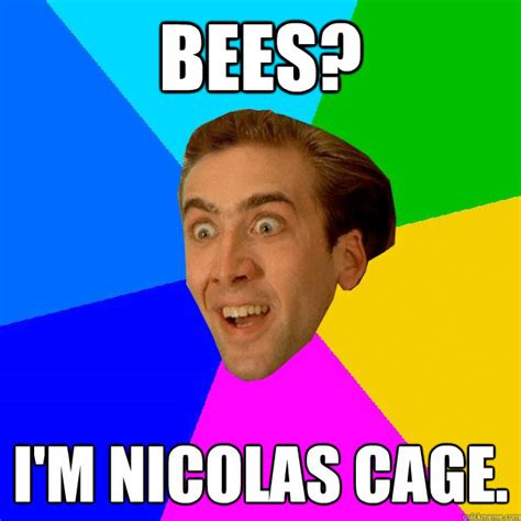 What Movie Is The Nicolas Cage Meme From - nicolas cage memes quickmeme