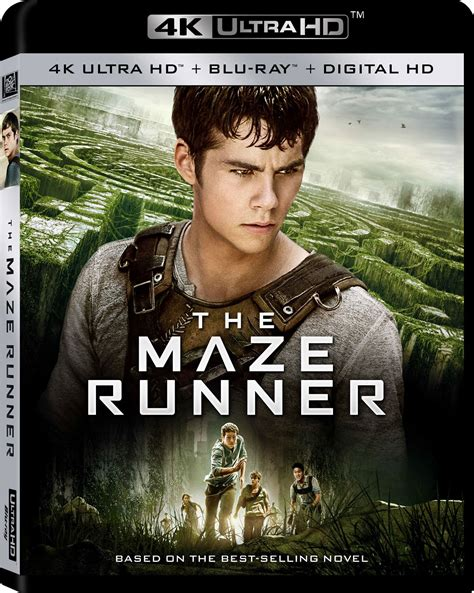 Film Maze Runner Dvd | the maze runner dvd release date december 16 2014