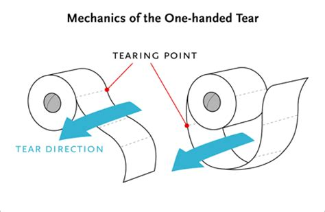 toilet paper proper way the right way toilet paper should roll from planck s constant