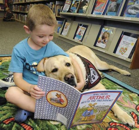 reading to dogs 17 best images about therapy dogs giving at hospitals and in libraries on