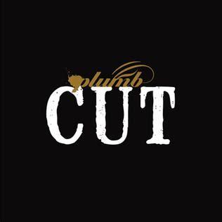 Lyrics Cut Plumb by