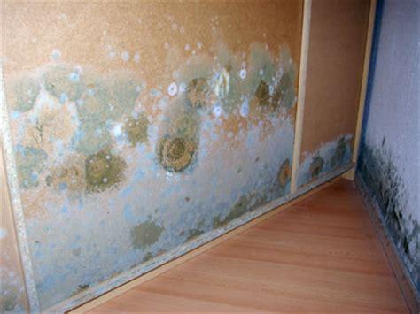 schimmelbefall im schlafzimmer schimmel im schlafzimmer die sachverst 228 ndige zeigt wo es