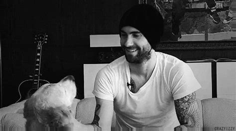 adam levine golden retriever adam levine says goodbye to his golden retriever frankie the daily golden