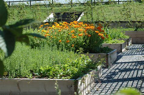 giardini curati finest i vigneti curati come giardini producono uve di