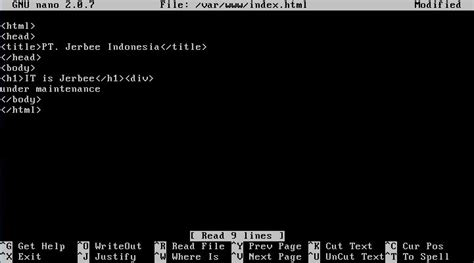 cara konfigurasi dns server di linux debian cara konfigurasi dns server pada debian 5 lenny debian