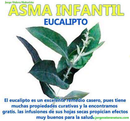 remedios naturales para enfermedades inediacom enfermedades infantil asma remedios caseros naturales