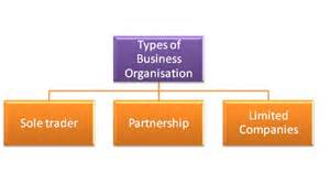types of business summary busorg
