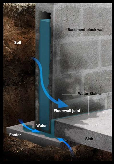 Make Your Wet Basement Dry   DIY Repair Guide   RadonSeal