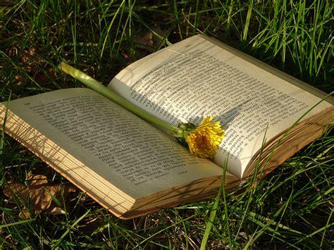 il fiore libro sognare con i libri