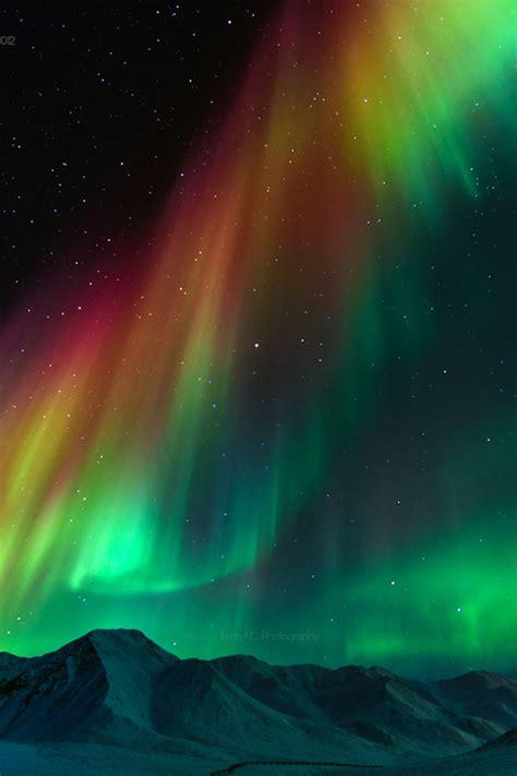 northern lights iphone wallpaper  wallpapersafari