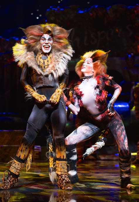 cats musical images cats a globally beloved musical is returning to