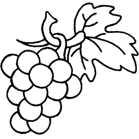 grape leaves coloring pages grapes drawing free download best grapes drawing on