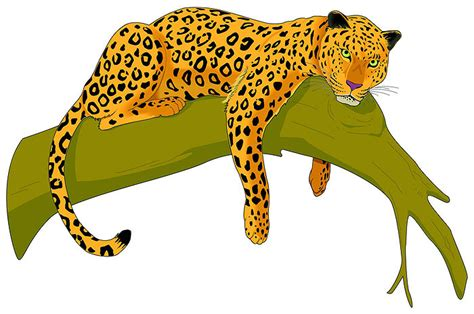 image gallery jaguar clip