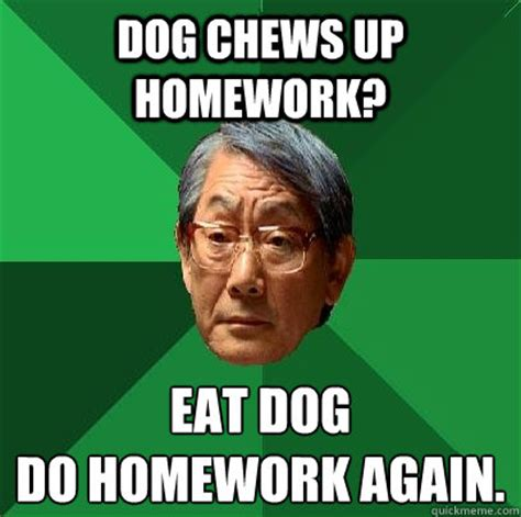 Asian Dog Meme - dog eat homework memes